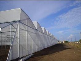锯齿型温室
